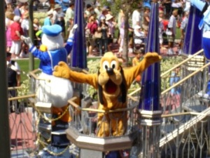 Disney World Magic Kingdom Pluto