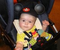 Disney World Mickey Mouse Ears