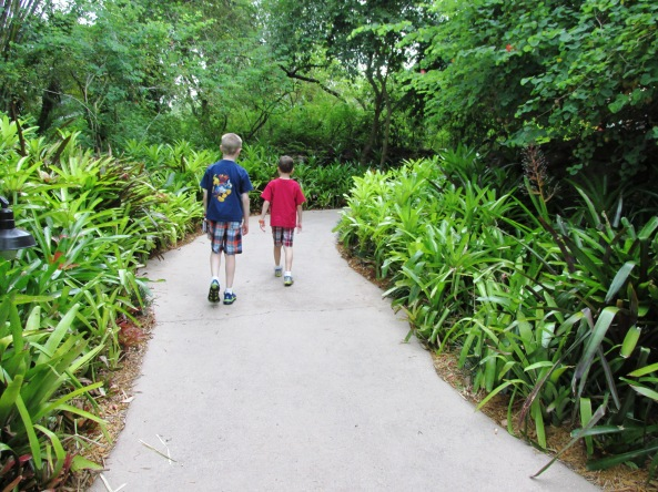 Disney World Jogging Paths