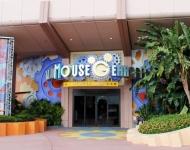 Disney World Shopping Mouse Gear