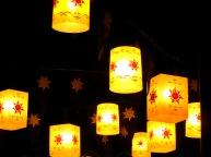 Magic Kingdom Lanterns At Night