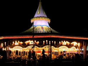 Magic Kingdom Carrousel At Night