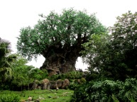 Disney's Animal Kingdom Tree of Life