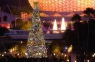 Disney World Holiday Decorations