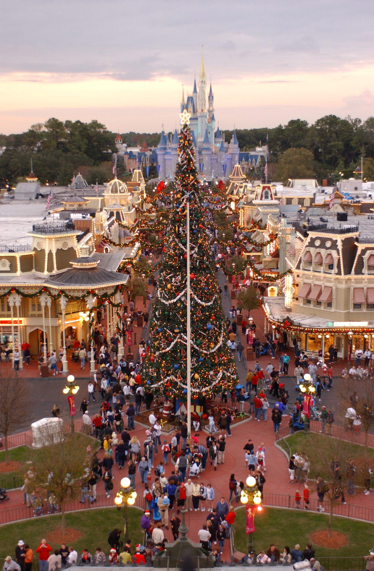 Tuesday Trivia Magic Kingdom Christmas Tree Disney World Enthusiast