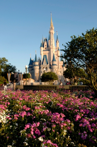 Disney World Spring