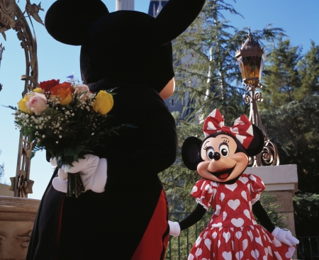 Disney World Valentine's Day