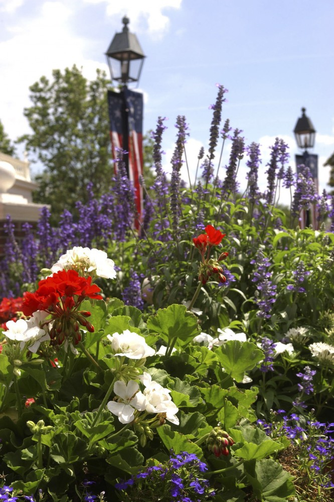 What's On The Agenda At The 2015 Epcot Flower & Garden