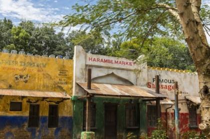 Harambe Village 10