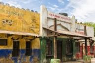 Harambe Village 8