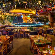 Rainforest Cafe AK