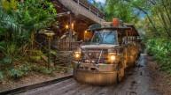 Safari at Night