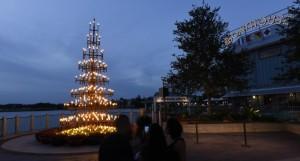 Disney Springs Christmas 3
