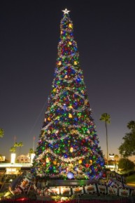 Hollywood Studios Christmas Tree