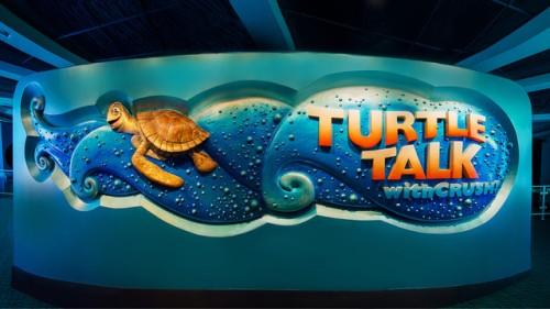 Turtle Talk