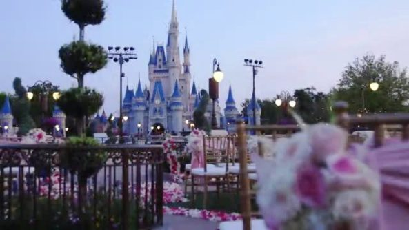 Magic Kingdom Wedding 2