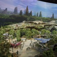 Star Wars Land 6
