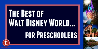 The Best of WDW Preschoolers Graphic