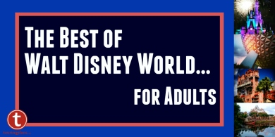 The Best of WDW for Adults Graphic