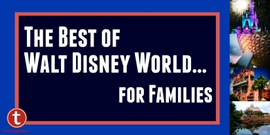 The Best of WDW for Families Graphic