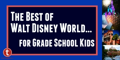The Best of WDW for Grade School Kids Graphic