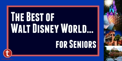 The Best of WDW for Seniors Graphic