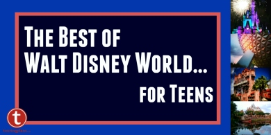 The Best of WDW Teens Graphic